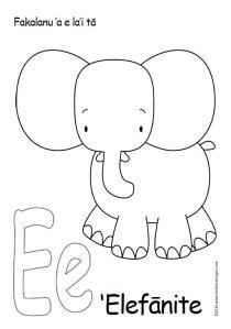 Elephantcolourin