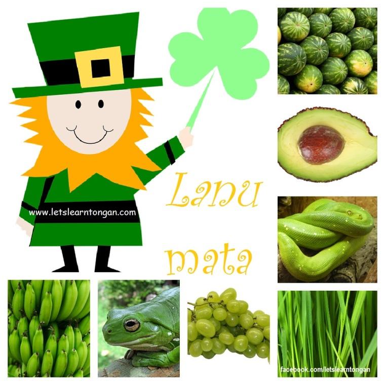 Celebrating everything Green.