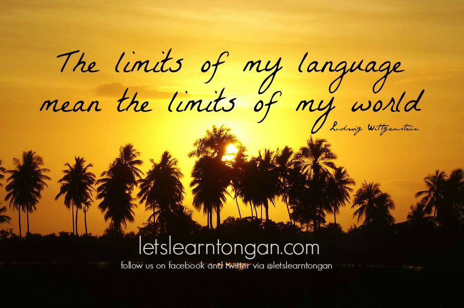 The limits of my language